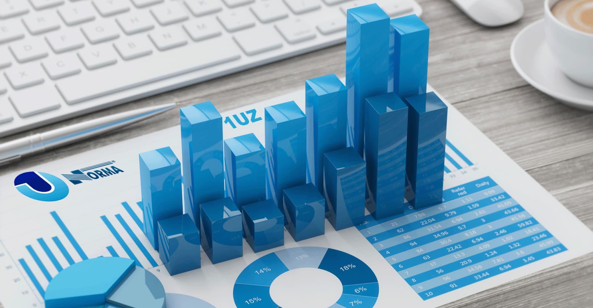 Бухгалтерский, финансовый и управленческий учет — «1UZ»
